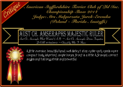 Amseraphs Majestic Ruler.png