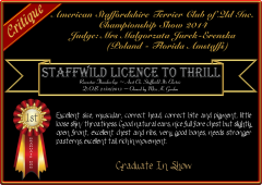 Staffwild Licence To Thrill.png