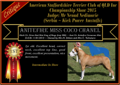 Class 5a ~ 1st ~ Anitefire Miss Coco Chanel.png