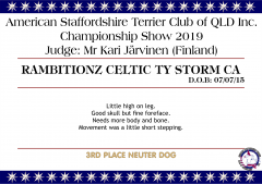 Rambitionz Celtic Ty Storm.png